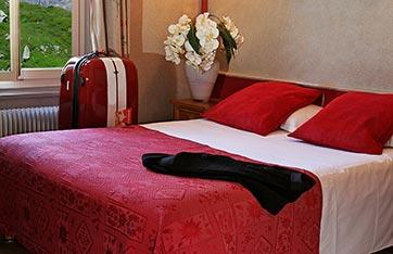 Hôtel des Alpes à Bonneville